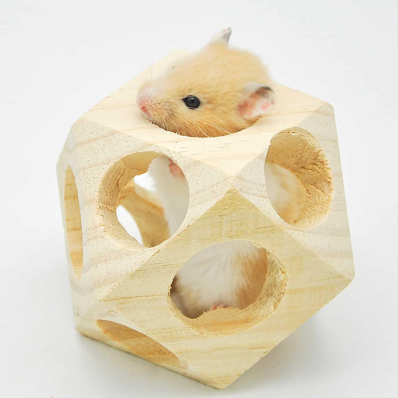 rat toys
